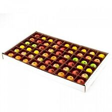 Bergen Marzipan 54 Piece Assorted Fruit Box Tray, 4oz, New, Free Shipping