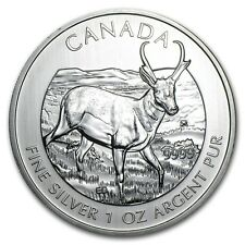 2013 1 oz Silver Canadian Antelope Coin - Canadian Wildlife Series - SKU #71331
