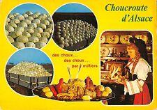 BR54288 Choucroute d alsace des choux dpar miliers france