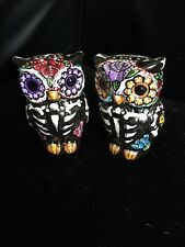 Hand Painted Owl Salt And Pepper Sugar Skull Day Of The Dead Dia De Los Muertos