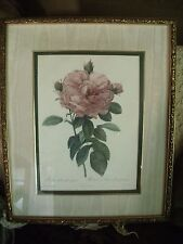 "Vintage Pierre-Joseph Redoute ""THE ROSE""  Bombay Reproduction Framed Art"