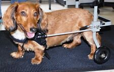 Dog Wheelchair, Extra small size dog approx. 9-18 lbs, New, ready to ship
