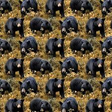 Wild Wings Big Ben Black Bears Brown Grass Cotton Fabric by the Yard