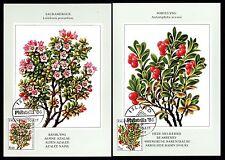 Island 619/20 Maximumkarten Blumen u.a. Bärentraube