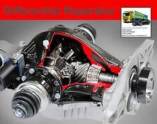 BMW Differential Reparatur Hinterachsgetriebe 335d M57N2 E90 E91 E92 Typ 215L