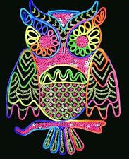 2pcs   large Rainbow owl lace patch DIY     27x20cm