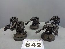 Warhammer marines espaciales lobo Guardia Terminator escuadrón 642