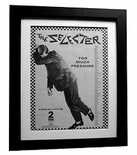 THE SELECTER+Too Much Pressure+POSTER+AD+RARE ORIG 1980+FRAMED+FAST GLOBAL SHIP2