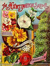 1894 Huntington Seed Vintage Flowers Seed Packet Catalogue Advertisement Poster
