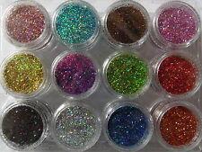 12 Farben Glitter Puder-Set für Nailart Design**NR. 14