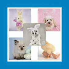 15 Rachael Hale Spring Easter Bunny Chick Dog Kitty Cat Stickers Party Favors