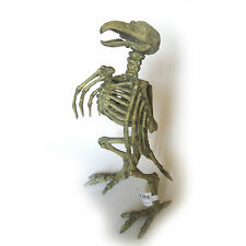Crow Skeleton Bird Scary Creepy Halloween Prop Decoration 8""