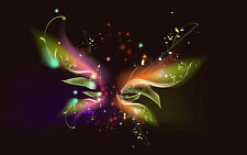 Framed Print - Multi Coloured Abstract Butterfly on a Black Background (Picture)