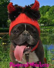 "Little Devil Halloween devil costume for dogs 16-22"" collar size"