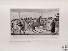 Henry Alken TATTERSALS Race Horse 1924 Lithograph Halftone Art Print