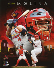 St Louis Cardinals YADIER MOLINA Glossy 8x10 Photo Collage Print Poster