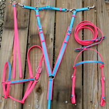 5PC Pink& Blue Endurance Tack Set. Snap On Headstall, Halter,Breast Collar, Rein