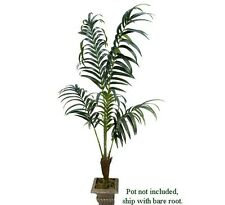 7' Kentia Palm Artificial Silk Trees Look Real TK666
