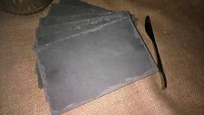 Beautiful NATURAL SLATE CHEESEBOARD Set of 12 SERVING PLATTERS Sushi Board, Gift