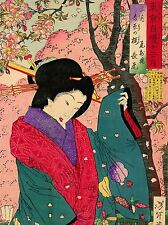 CULTURAL JAPAN ABSTRACT GEISHA DRESS CHIKANOBU POSTER ART PRINT PICTURE BB684A