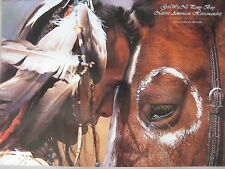 Gawani Pony Boy Native American Horsemanship By Gabriele Boiselle Poster, Signed