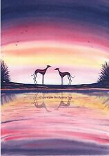 Whippet greyhound dog Lurcher Italian Greyhound  Watercolour and ink painting