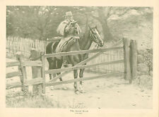 A.B. Frost, Rural, Horse And Rider, Reading, Vintage, 1914 Antique, Art Prints,