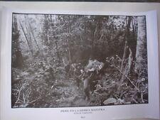 Cuban Propaganda Poster FIDEL CASTRO in Sierra Maestra Mountains in 1950s / CUBA
