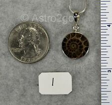 CUT AMMONITE PENDANTS $39 Sterling Silver Fossil Jewelry STARBORN CREATIONS NEW!