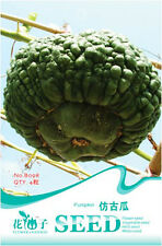1 Pack 4 Antique Shape Pumpkin Seeds Cushaw Squash Organic B098