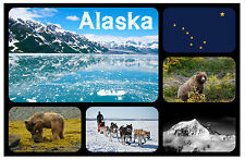ALASKA - SOUVENIR NOVELTY FRIDGE MAGNET - BRAND NEW - GIFT / XMAS