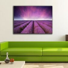 50×70×3cm Lavender Canvas Prints Framed Wall Art Home Decor Painting Gift V