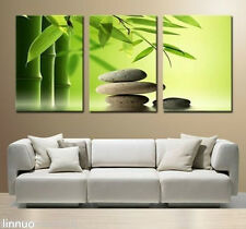 New Abstract Art Decor Wall Oil Painting Calming Bamboo Canvas 3PC (No Frame)