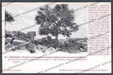 SIRACUSA CITTÀ Cartolina 8 bis. Serie CASA DEI VIAGGIATORI