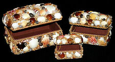 Set Of 3 Seashell Jewelry Treasure Chest Boxes/Assorted Shell Design/Rope Trim