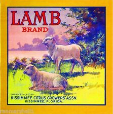 Kissimmee Florida Lamb Sheep Orange Citrus Fruit Crate Label Vintage Art Print