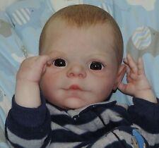 """Big Brown Eyed Preemie Reborn Baby Boy  (Miles - Denise Pratt)16"""" 3LBs 8OZs"""
