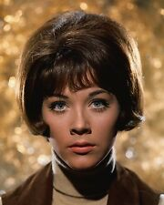 "Linda THorson Avengers 10"" x 8"" Photograph no 3"