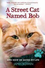 A Street Cat Named Bob : And How He Saved My Life by James Bowen (2014,...