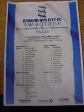 30/11/2013 Birmingham City Youth v Crewe Alexandra Youth [At Wast Hills] (Colour
