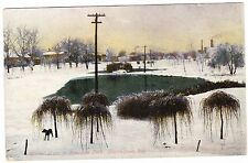 WINTER SCENE IN RIVERSIDE PARK  LOGANSPORT INDIANA 1909 POSTCARD