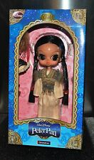 NEW  LARGE PULLIP DOLL Disney  PETER PAN Byul Groove Inc GIFT BOX Ltd  Anime