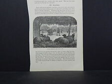 Sheep ONE In-Text Engraving Double Sided 1860s - 1880s #03 Simple Shelter/Trough