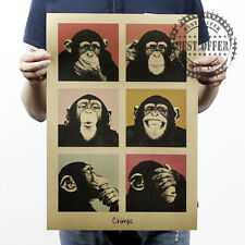 Poster Vintage Retro Wall Art Home Office Chimpanzee Animal My Rule 20x14""