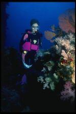156011 Scuba Diver And Pacific Sea Fans A4 Photo Print