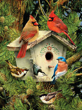 Paint by Number Kit NATIVE NEIGHBORS Birds
