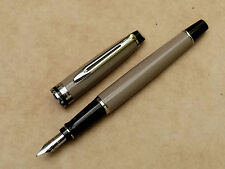 Stylo plume fountain pen fullhalter vulpen WATERMAN EXPERT nib écrit writing 鋼筆