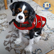 PAWS ABOARD Dog Life Jacket Pool Vest Lifeguard Red Neoprene SMALL 15-20 lb NEW
