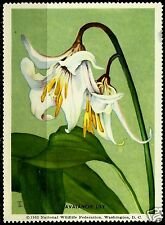 AVALANCHE LILY, NATIONAL WILDLIFE FEDERATION CINDERELLA 1953, MNH
