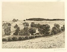 HANS RICHARD VON VOLKMANN - Büsche und Bäume - Radierung 1907